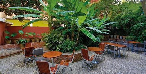 Hôtel Napoléon - Détendez-vous au jardin