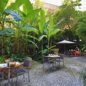 Hôtel Napoléon - Le jardin de l'hotel
