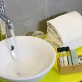 Hôtel Napoléon - Private Toilet  - Detail